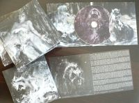 EVOLET / CRAWL BACK IN split CD