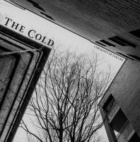 THE COLD - Certainty Of Failure LP