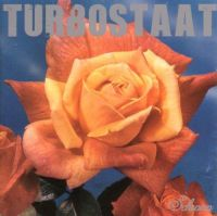Turbostaat – Schwan LP